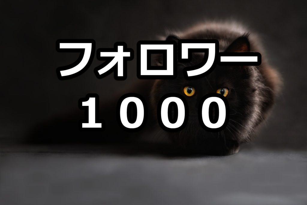 【チートか】ツイッターでフォロワー1000人に増やす方法
